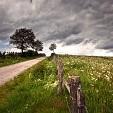 Ardennes Forest壁紙の画像(壁紙.com)