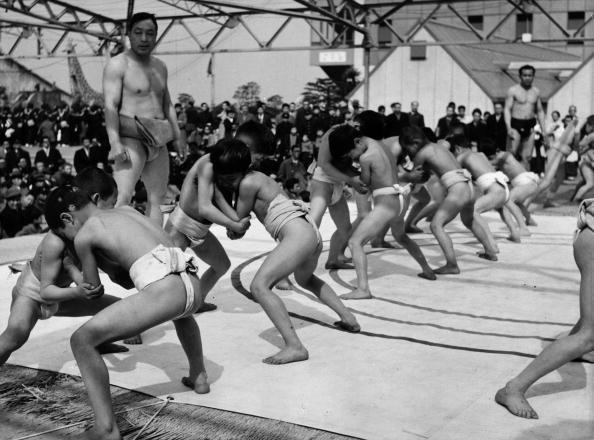 Practicing「Sumo Training」:写真・画像(10)[壁紙.com]
