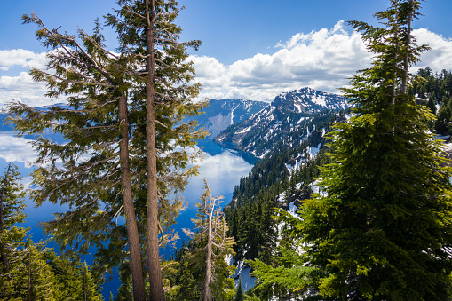 Crater Lake National Park「South shoreline of Crater Lake in Springtime」:スマホ壁紙(13)