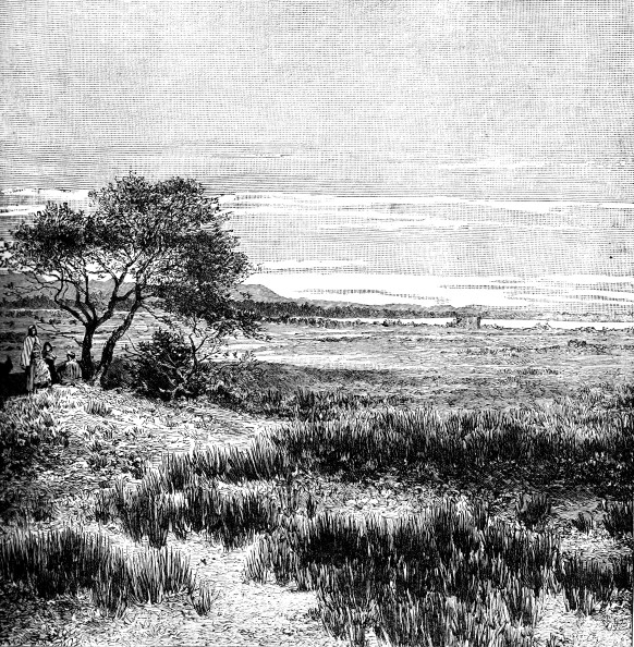 Pampas「Agha Valley, Central Pampa, Argentina, 1895.」:写真・画像(12)[壁紙.com]