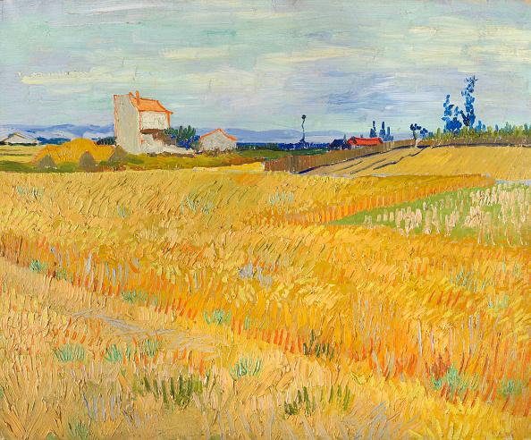 Yellow「Wheat Field (Champ De BlÈ) 1888」:写真・画像(16)[壁紙.com]