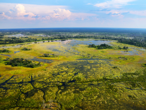 Okavango Delta「Flying over Okavango Delta - Interesting landscape」:スマホ壁紙(15)
