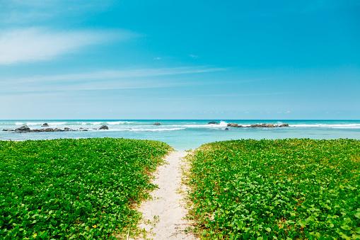 Sri Lanka「Indian ocean shore, Sri Lanka」:スマホ壁紙(14)