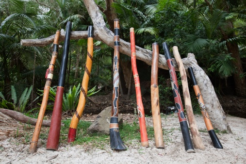 Indigenous Culture「a variety of didgeridoo lined up and leaning against a tree branch」:スマホ壁紙(15)