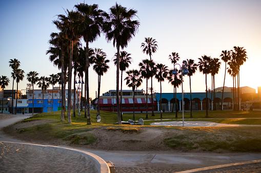 マイアミビーチ「Venice Beach early in the morning」:スマホ壁紙(15)
