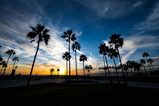Miami Beach「Venice Beach at sunset」:スマホ壁紙(7)