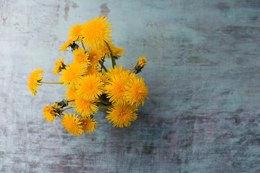 たんぽぽ「Bunch of dandelions」:スマホ壁紙(14)