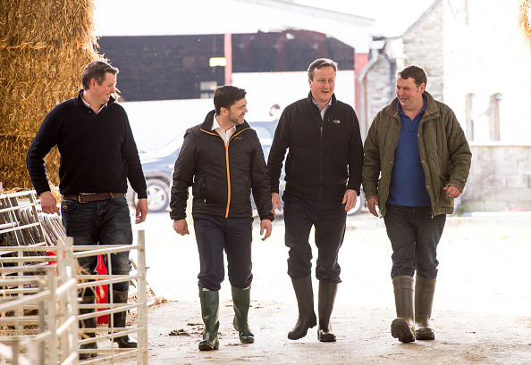 Finance and Economy「The Prime Minister Visits A Farm Ahead Of The Welsh Conservatives Conference」:写真・画像(17)[壁紙.com]