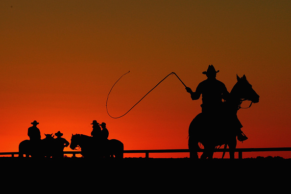 Whip - Equipment「The Great Australian Outback Cattle Drive Previews In South Australia」:写真・画像(8)[壁紙.com]