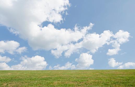 積雲「Field of grass and sky」:スマホ壁紙(12)