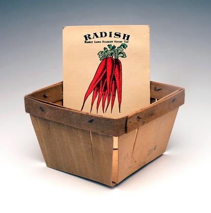 Radish「seed pack」:スマホ壁紙(0)