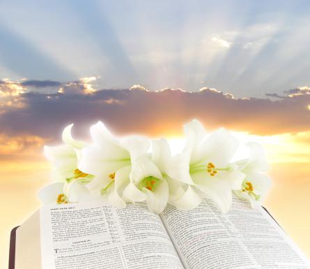 Easter「Easter Morning」:スマホ壁紙(13)