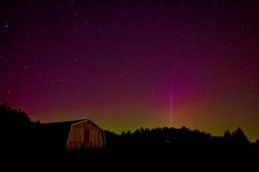Boreal Forest「Aurora Borealis, Nova Scotia, Canada」:スマホ壁紙(19)