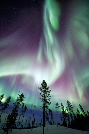 星空「Aurora Borealis」:スマホ壁紙(7)