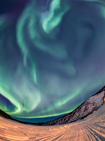 Yukon「Aurora borealis,Yukon Territory,Canada」:スマホ壁紙(7)