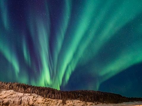 Yukon「Aurora borealis,Yukon Territory,Canada」:スマホ壁紙(12)