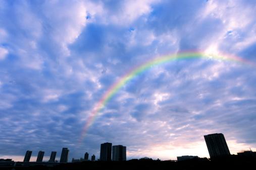 虹「Rainbow Over Tokyo」:スマホ壁紙(11)