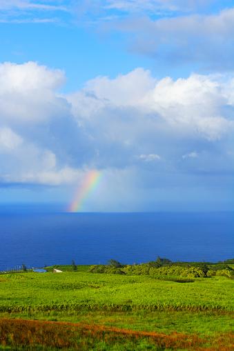 虹「Rainbow Over Ocean, Hawaii, USA」:スマホ壁紙(5)