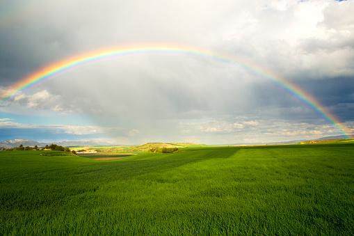 虹「レインボー、グリーンフィールド」:スマホ壁紙(7)