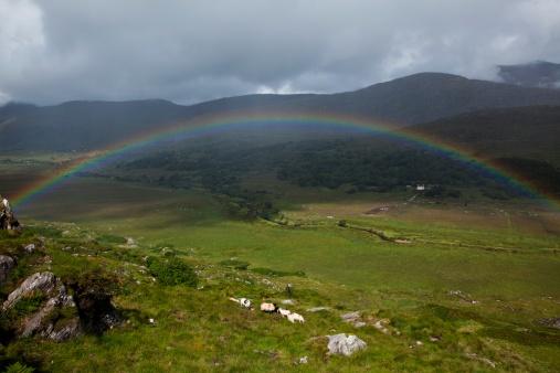 虹「Rainbow Over Irish Landscape」:スマホ壁紙(1)
