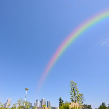 虹「Rainbow Over Toyosu」:スマホ壁紙(10)