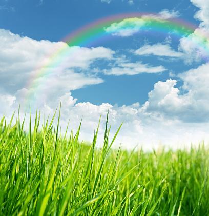虹「レインボー、草地」:スマホ壁紙(17)