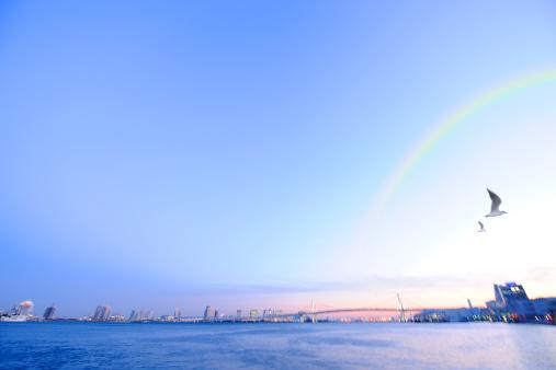 虹「Rainbow over Rainbow Bridge, Minato ward, Tokyo Prefecture, Honshu, Japan」:スマホ壁紙(16)