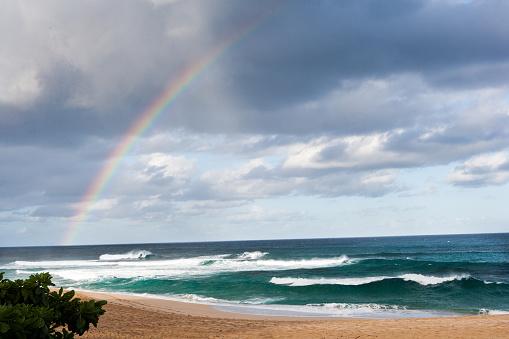 オアフ島「Rainbow over paradise」:スマホ壁紙(16)