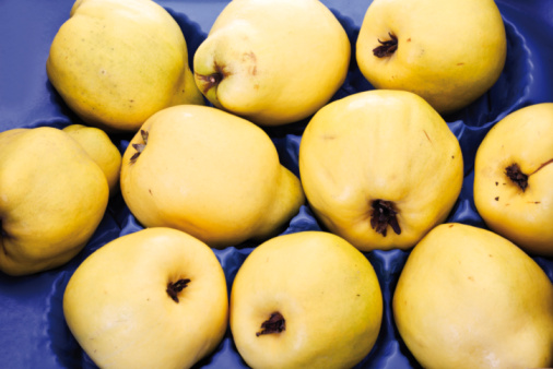 カリン「Quinces, (Cydonia oblonga) elevated view」:スマホ壁紙(11)