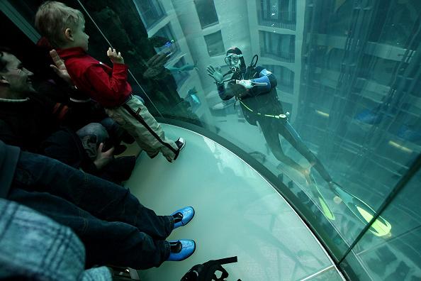 25 Meter「Divers Clean AquaDom Aquarium」:写真・画像(18)[壁紙.com]