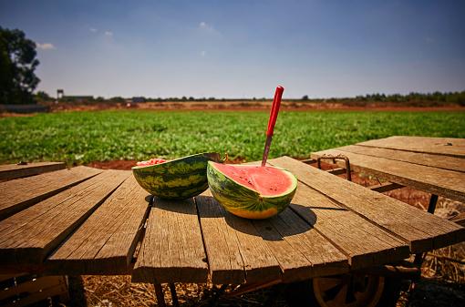 スイカ「Italy, Apulia, Freshly harvested water melon on wooden cart」:スマホ壁紙(11)