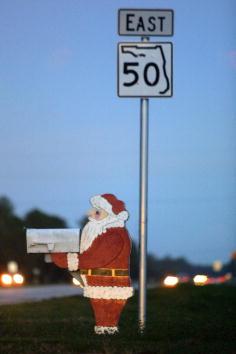 Florida - US State「Christmas Florida」:写真・画像(13)[壁紙.com]