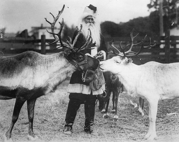 Reindeer「Santa Claus With Two Reindeer」:写真・画像(8)[壁紙.com]