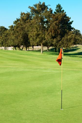 Putting - Golf「Beautiful green golf course, red flag」:スマホ壁紙(8)