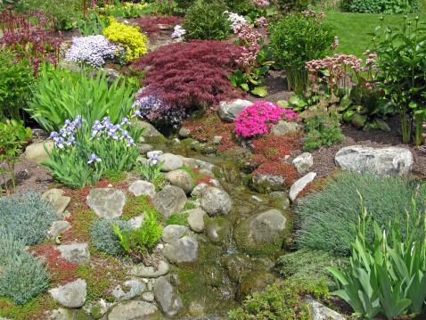 Rock Garden「Beautiful Garden」:スマホ壁紙(13)