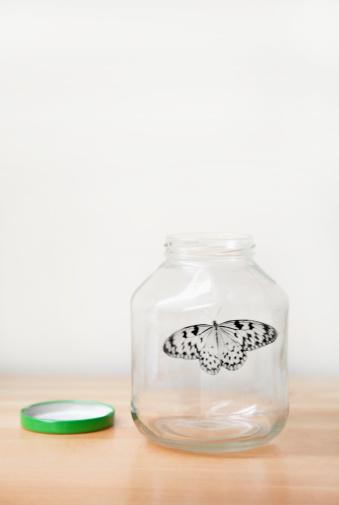 Effort「Butterfly in glass bottle.」:スマホ壁紙(10)