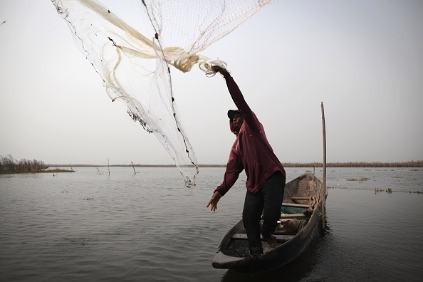 Lagoon「Daily Life In And Around Cotonou」:写真・画像(18)[壁紙.com]