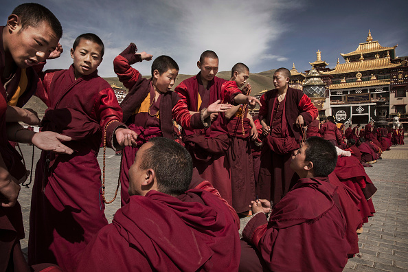Monk - Religious Occupation「Search For Prized Fungus A Way Of Life On Tibetan Plateau」:写真・画像(9)[壁紙.com]