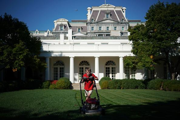 イネ科「President Accepts Offer From  11-Year-Old Virginia Boy To Mow Lawn Of White House」:写真・画像(4)[壁紙.com]