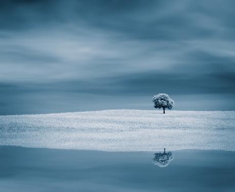 Imagination「Tree near water」:スマホ壁紙(6)