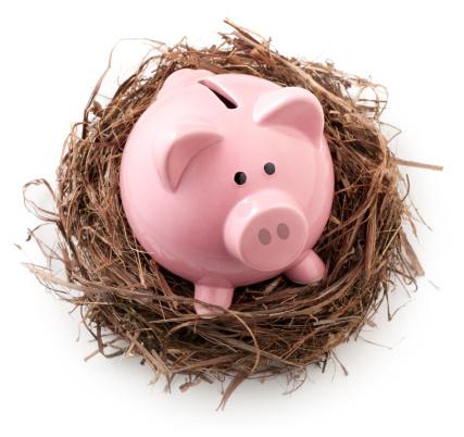 鳥の巣「Nest にピギー銀行ます。」:スマホ壁紙(13)