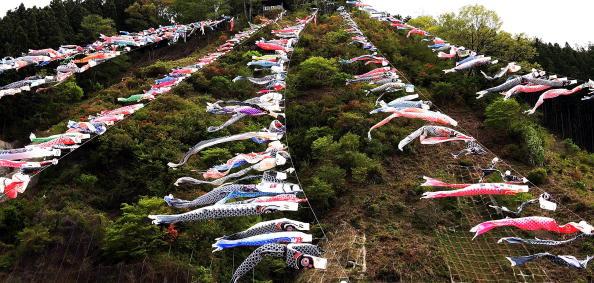 こいのぼり「Carp Streamers Are Hung Over The River」:写真・画像(13)[壁紙.com]