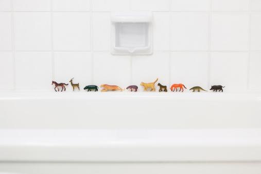 Toy Animal「Toy animals on bath ledge」:スマホ壁紙(13)