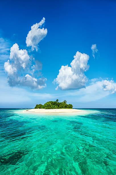 エキゾチックなパラダイスの孤独な熱帯の島、カリブ海の:スマホ壁紙(壁紙.com)