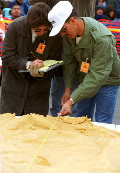Tortilla - Flatbread「Attempt at the world record for the largest enchilada」:写真・画像(12)[壁紙.com]