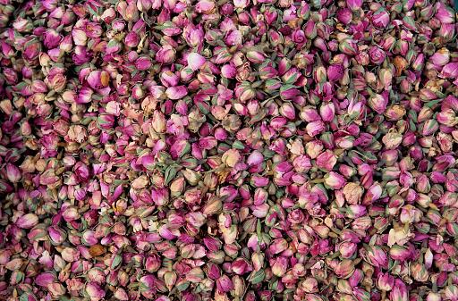 Grasse「Pink Flower Buds」:スマホ壁紙(10)