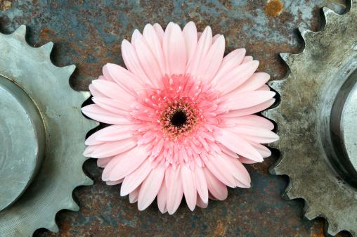 Healing「Pink flower in between of two rusted gears」:スマホ壁紙(6)