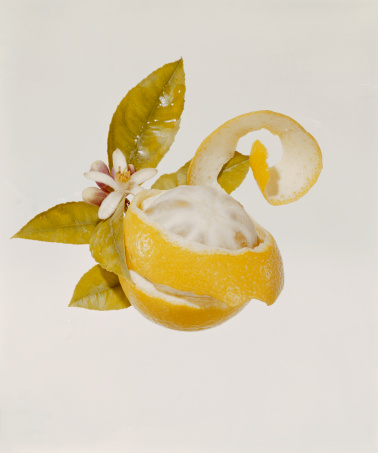 1967「Peeled orange with blossom on white background, close-up」:スマホ壁紙(11)