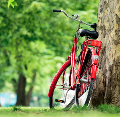 Human Powered Vehicle「Red Bike in the Park」:スマホ壁紙(15)
