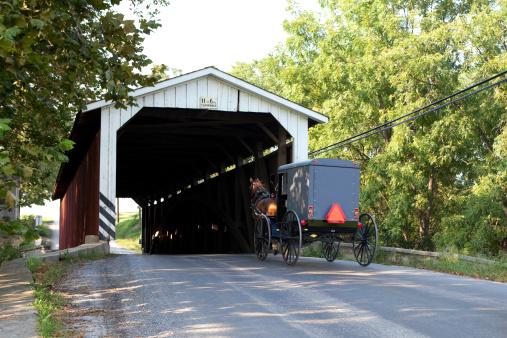 Horse-drawn carriage「屋根付き橋、アーミッシュのバギーの馬と」:スマホ壁紙(18)